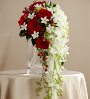 Here Comes the Bride Bouquet makes a dramatic presentation perfect for the bride that likes to hold everyone's attention. White dendrobium orchids cascade from a compact bouquet of red roses, white stephanotis (seasonally available), red hypericum berries green hydrangea and lush greens. Accented with rhinestone spray pics and dangling teardrop glass crystal stems, this incredible bouquet is beautifully presented in a silver metallic bouquet holder.