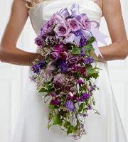 True Happiness Bouquet speaks of garden grandeur and sweet romance. Lavender roses are positioned at the top of this cascade bouquet which features fuchsia dendrobium orchids, pink waxflower, lavender mini carnations, purple delphinium and ivy vines elegantly suspended to create a fantastic look. Tied together with a lavender grosgrain ribbon, this bouquet is a blessing of true happiness and lasting love.