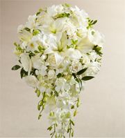 The White Wonders Bouquet is an exquisite display of wedding elegance. An incredible array of white blooms, including, Dendrobium Orchids, roses, Asiatic Lilies, freesia (seasonally available), spray roses, and mini hydrangea are offset by beautiful lush greens and arranged in a cascade fashion to create a memorable bouquet that will complete your bridal look with its sweet sophistication.