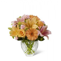 "The FTD Brighten Your Day Bouquet is blooming with brilliant color and cheer and is sure to lift their spirits with each exquisite bloom. Peach roses, gerbera daisies and Asiatic lilies bring a soft energy to this bouquet when combined with pink mini carnations, pink Asiatic Lilies, bupleurum and variegated pittosporum.  Beautifully presented in a designer clear glass vase, this bouquet creates a wonderful way to show them how much you care. GOOD bouquet includes 8 stems. Approx. 12""H x 12""W. BETTER bouquet includes 11 stems. Approx. 13""H x 13""W. BEST bouquet includes 14 stems. Approx. 14""H x 14""W.  <br>"
