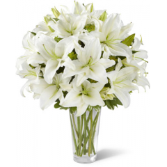 The FTD Spirited Grace Lily Bouquet offers sweet serenity with every fragrant bloom. Bright white Oriental lilies create a simple, yet sophisticated bouquet, arranged in a sleek clear glass vase sending your wish for happiness and tranquility.<br>