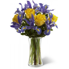 """The FTD Sunlit Treasures Bouquet spreads joy and light with its rich display of brilliant color. Deep midnight blue iris set an impressive background to vibrant yellow roses perfectly arranged in a clear glass vase, creating a bouquet of happy wishes for a wonderful Spring season.  <br><br>Approximately 15""""H x 11""""W"""