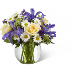 """The FTD Sweet Beginnings Bouquet exudes the promise of each day's potential with its unlimited beauty. Deep purple iris mingles with pale yellow roses, white traditional daisies, Queen Anne's Lace and lush greens to create an incredible look. Arranged in a clear glass bubble bowl vase, this bouquet is full of warm wishes and sweet sentiments. GOOD bouquet includes 12 stems. Approx. 11""""H x 12""""W. BETTER bouquet includes 16 stems. Approx. 12""""H x 13""""W. BEST bouquet includes 20 stems. Approx. 14""""H x 15""""W. <br>"""
