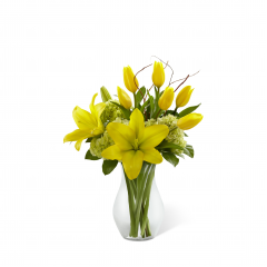 """The FTD Your Day Bouquet is a bright and sunny display set to uplift their spirits with each exquisite bloom. Yellow tulips and Asiatic lilies are arranged amongst green mini hydrangea, lush greens and a curly willow accent. Seated in a classic clear glass vase this brilliant bouquet is a warm way to send your sweetest sentiments. GOOD bouquet includes 10 stems. Approx. 15""""H x 12""""W. BETTER bouquet includes 14 stems. Approx. 16""""H x 14""""W. BEST bouquet includes 18 stems. Approx. 17""""H x 15""""W. <br>"""