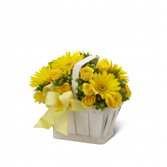The FTD Uplifting Moments Basket is a guaranteed way to lift any mood and spread cheer with each sunlit petal! Bright yellow gerbera daisies and spray roses burst with vibrant energy arranged amongst green hypericum berries and myrtle greens in a simply stylish whitewash basket. Bedecked with a lemon yellow wired ribbon this bouquet proclaims an abundance of light and hope.<br>