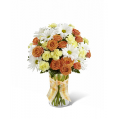 """The FTD Sweet Splendor Bouquet radiates cheer and well-wishes with every sun-filled bloom! Orange spray roses, yellow mini carnations, white traditional daisies and lush greens are brought together in a classic clear glass vase accented with a designer apricot plaid ribbon to create a bouquet set to brighten any day. GOOD bouquet includes 8 stems. Approx. 14""""H x 10""""W. BETTER bouquet includes 13 stems. Approx. 15""""H x 11""""W. BEST bouquet includes 19 stems. Approx. 16""""H x 12""""W. <br>"""