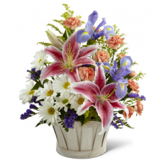The FTD Wondrous Nature Bouquet is bountifully bedecked with a dazzling display of color and beauty. Stargazer lilies stretch their fuchsia petals out amongst an arrangement of blue iris, white traditional daisies, orange mini carnations, purple statice, and yellow solidago in a round whitewash handled basket, creating a delightful bouquet your special recipient will adore.  <br>