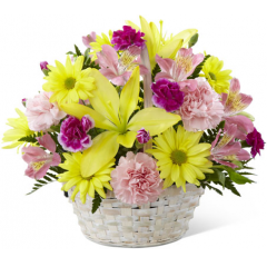 "The FTD Basket of Cheer Bouquet sends your warmest wishes for happiness with each sunlit bloom! Yellow Asiatic lilies and traditional daisies are vibrant and beautiful arranged amongst pink carnations, pink Peruvian lilies and magenta mini carnations. Accented with lush greens and presented in a round whitewash handled basket, this arrangement is a sweet sentiment brought together to brighten your special recipient's day. GOOD basket includes 11 stems. Approx. 11""H x 13""W. BETTER basket includes 15 stems. Approx. 12""H x 15""W. BEST basket includes 20 stems. Approx. 13""H x 16""W. <br>"