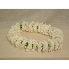 Available in any color carnations!  Give us a call to select your color.