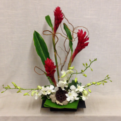 Celebrate in style with this exotic and elegant tropical arrangement!