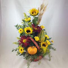 """A plentiful arrangement of sunflowers, red rovers, asters, and gourds, with fall accents.  Arranged in a fall-tone basket, colors may vary.  Approx. 21""""H x 12""""W"""