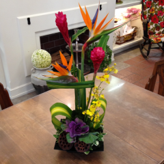 "A striking tropical arrangement in a low dish.  29""H x 10""W"