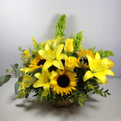 "Send a little sunshine to brighten someone's day, or help a loved one in need.  Contains lilies, sunflowers, roses, bells of Ireland, and golden aster.  Approx. 12""H x 16""W"