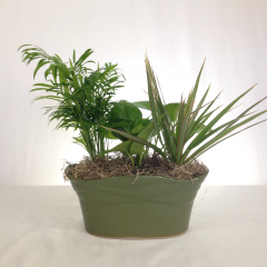 A nice collection of hearty green plants in a ceramic container.