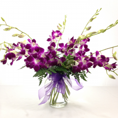 A beautiful dendrobium orchid arrangement in a vase.