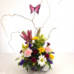 A cute basket arrangement of flowers with a butterfly perched nearby.  Contains poms, lilies, carnations, solidago, curly willow, and statice arranged in a basket.