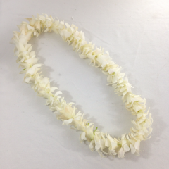 A single white dendrobium orchid lei.