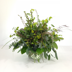 "An arrangement made from all different types of greenery and a filler or two!  Contains bupleurum, agonis, boxwood, baby blue eucalyptus, gunni eucalyptus, silver dollar eucalyptus, montebretia pods, salal, ti leaves, and bear grass.  Approx. 17""H x 14""W"