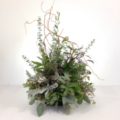 "A combination of greenery and succulent plants make a beautiful forest.  Approx. 23""H x 16""W"