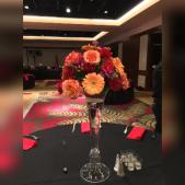 Vibrant Reception