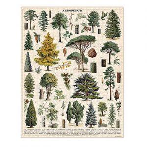 Arboretum Puzzle Addon