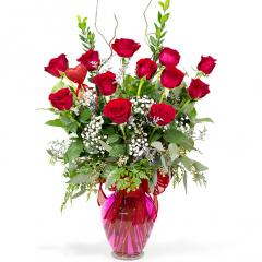 Premium Long Stem Red Roses - 1-Dozen