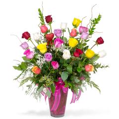 Premium Long Stem Color Roses - Two Dozen
