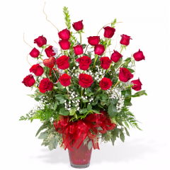 Premium Long Stem Red Roses - 2 dozen