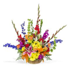 Call Me Colorful Basket - Medium