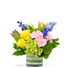Spring Smiles - Small (shown)