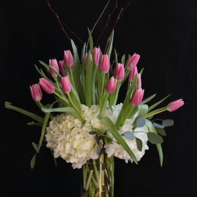 Ninth Street Flowers Durham - A crisp arrangement featuring 20 tulips, plus hydrangea and spring twigs in a classic cylinder vase