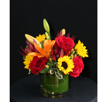 Ninth Street Flowers Durham - Make someone feel all sunny inside. This European compact featuring sunflowers and enhanced with other bright blooms will put a smile on anyone's face.