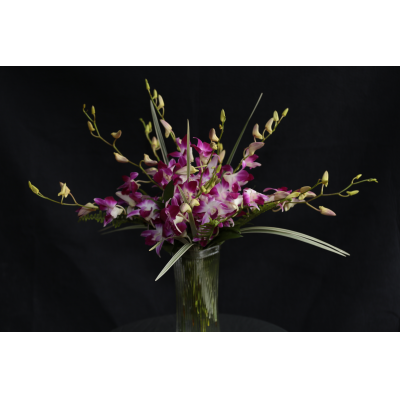 Ninth Street Flowers Durham - Dendrobium Orchids stems arranged in a vase with a touch of greenery. Order 15 Orchid Stems (Standard), 25 Orchid Stems (Premium) or 40 Orchid Stems (WOW)!