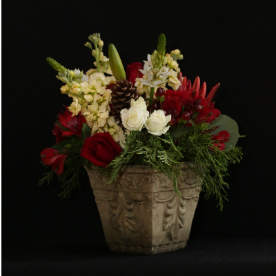 Ninth Street Flowers Durham - A decorative ceramic container displaying a lush arrangement of roses, stocks, Gerber (Gerbera) daisies, snapdragons and ____, all in reds and whites with greenery accents. Perfect for a holiday centerpiece. Please note that flowers may vary slightly, as we select the freshest blooms to complete the arrangement. The spirit of the arrangement will remain the same.  Add a taper candle for an even more festive presentation.