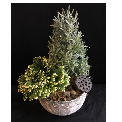 Ninth Street Flowers Durham - Add a touch of the outdoors to your home holiday decor. Our nature-inspired arrangement in a decorative ceramic bowl features a fresh lavender or rosemary plant in a tree-shaped topiary form, a frosted fern, a lotus pod and other natural adornments. Let us choose lavender or rosemary, depending upon which is freshest.  Add a taper candle for even more festive holiday spirit.