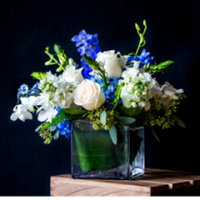 Ninth Street Flowers Durham - Drawing on cool colors, white & blue, our charming arrangement expresses your kindhearted wishes. Hand-designed inside a clear, cubed vase, it is sure to warm the heart during the cold, winter months.