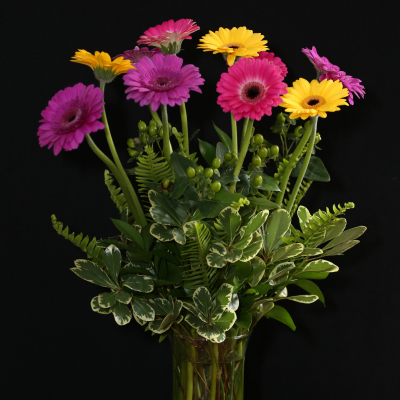 Ninth Street Flowers Durham - Gerbera Daisies are a cheerful favorite in seasonal colors, enhanced with mixed greenery!